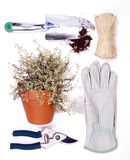 Gardening tools isolated Stock Images