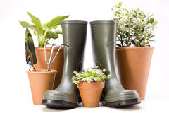 Gardening tools over white, isolated Royalty Free Stock Photo