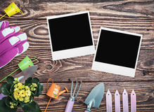 Gardening tools and photo frame on a wooden table Royalty Free Stock Image