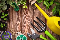 Gardening tools and plants royalty free stock images