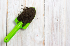 Gardening tools. Plants and soil on white wooden table Royalty Free Stock Image