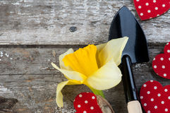 Gardening tools, polka dot red heart Royalty Free Stock Images