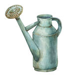 Gardening tools rusty tin watering can for watering flowers. Hand drawn watercolor painting on white background Royalty Free Stock Photo