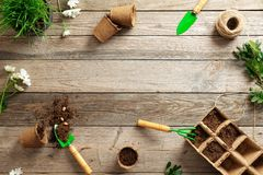 Gardening tools, seeds, plants and soil on vintage wooden table. Gardening or planting concept. Working in the spring garden.  stock images