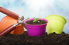 Gardening tools Royalty Free Stock Photos