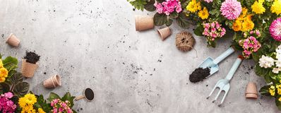 Gardening Tools on Shale Background. Spring Garden Works Concept royalty free stock photo