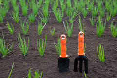 Gardening tools. In a soil Royalty Free Stock Photography