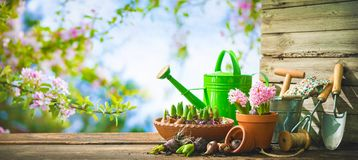 Gardening tools and spring flowers on the terrace Stock Photo