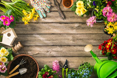 Gardening tools and spring flowers Stock Photo