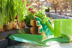 Gardening tools and a straw Stock Photography