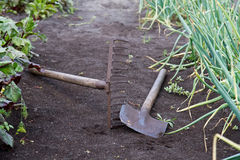 Gardening tools in the vegetable garden Royalty Free Stock Images