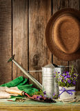 Gardening tools on vintage wood background - spring royalty free stock images
