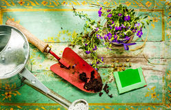 Gardening tools on vintage wood background - spring. Gardening tools: watering can, flowers, spade, soil and seeds on green vintage wood background. Spring in Royalty Free Stock Image