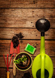 Gardening tools on vintage wooden table - spring. Gardening tools, watering can, seeds, plants and soil on vintage wooden table. Spring in the garden concept royalty free stock photos