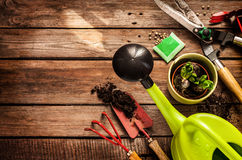 Gardening tools on vintage wooden table - spring. Gardening tools, watering can, seeds, plants and soil on vintage wooden table. Spring in the garden concept Stock Photography