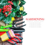 Gardening tools on a white background isolated Royalty Free Stock Image