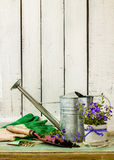 Gardening tools on white wood background - spring. Gardening tools: watering can, flowers, gloves, spade, soil and seeds on white planked wood background. Spring Stock Photo