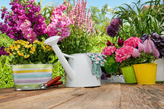 Gardening tools on wood table in the garden Stock Photo