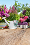Gardening tools on wood table in the garden Royalty Free Stock Photo
