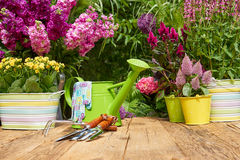 Gardening tools on wood table in the garden Stock Photography