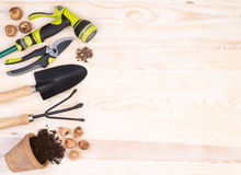 Gardening tools on wooden background Royalty Free Stock Image