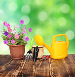 Gardening tools. On a wooden table Royalty Free Stock Images