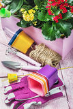 Gardening tools on a wooden table. Focus on the gloves Royalty Free Stock Image