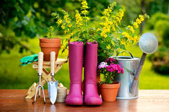 Gardening tools on wooden table and green background Stock Image