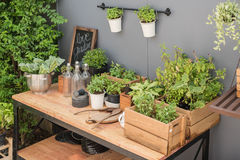 Gardening tools on wooden table Royalty Free Stock Photography