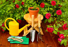 Gardening tools on wooden table and rose flowers background Royalty Free Stock Photo