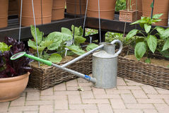 Gardening - watering can and flower pots. English garden Royalty Free Stock Photo