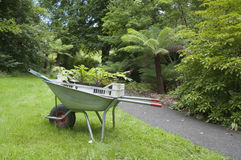 Gardening wheelbarrow with seedlings Stock Images