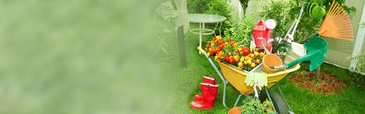 Gardening. Wheelbarrow with gardening tools in the garden Royalty Free Stock Photography