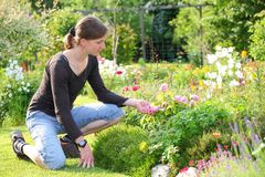 Gardening woman Stock Photography