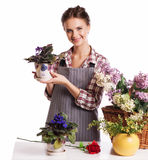 Gardening. Woman with flowers. Isolated over white background royalty free stock photography