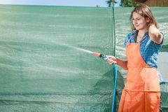 Woman watering the garden with hose. Gardening. Woman in orange apron holds the sprinkler hose for irrigation plants watering the garden outdoor royalty free stock image