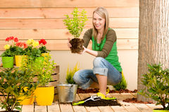 Gardening woman plant spring flower terrace. Gardening woman hold flowerpot plant spring terrace stock images
