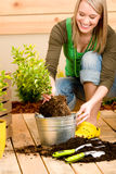 Gardening woman planting potted green spring Royalty Free Stock Images