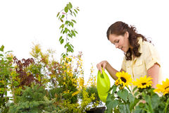Gardening - Woman pouring plants with watering can Stock Photography