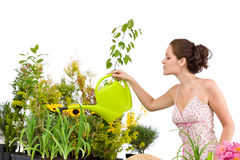 Gardening - Woman pouring water to plants Royalty Free Stock Image
