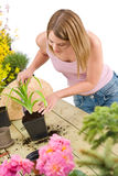 Gardening - woman with shovel take care of plant Stock Images