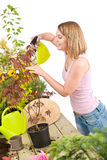 Gardening - woman sprinkling water to plant Royalty Free Stock Photography