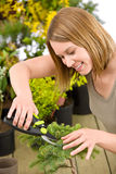 Gardening - woman trimming bonsai tree Royalty Free Stock Photos