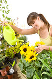 Gardening - woman with watering can pouring water Royalty Free Stock Photo