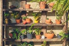 Gardening on Wood Shelf stock photos