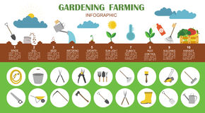 Gardening work, farming infographic. Graphic template. Flat styl Royalty Free Stock Photography
