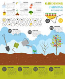 Gardening work, farming infographic. Graphic template. Flat styl Royalty Free Stock Photos