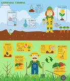 Gardening work, farming infographic. Graphic template. Flat styl Stock Photos