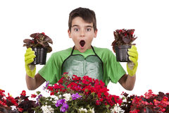 Gardening. Young with flowers, gardening and garden plants Royalty Free Stock Images