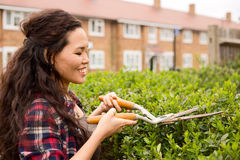 Gardening. Young woman cutting her hedge Stock Photos